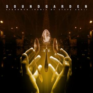 Spoonman - Steve Aoki Remix cover art