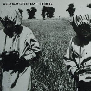 Decayed Society