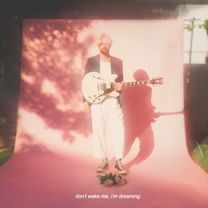 Palm Springs (the way you made me feel)