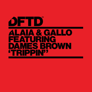 Alaia & Gallo ft Dames Brown – Trippin (Studio Acapella)