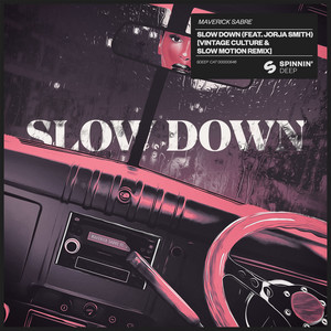 Slow Down  - Vintage Culture & Slow Motion Remix cover art