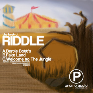 Fake Land by Riddle