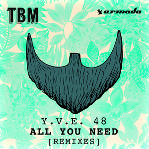 All You Need (Remixes)
