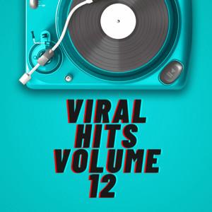 Viral Hits Volume 12