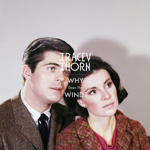 Tracey Thorn - Why does the wind? (Morgan Geist Remix)