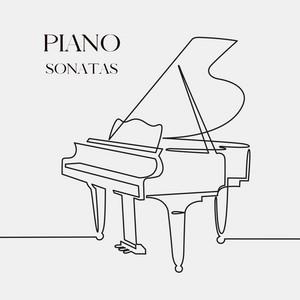 Piano Sonata No. 2 in B-Flat Minor, Op. 35: III. M... cover art