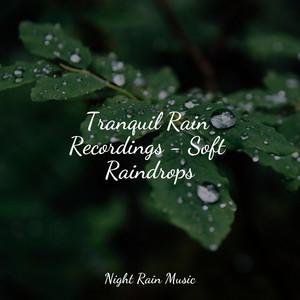 Tranquil Rain Recordings - Soft Raindrops