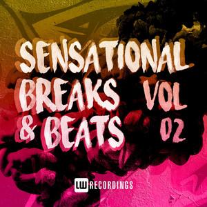 Sensational Breaks & Beats, Vol. 02
