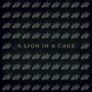 A Lion in a Cage by Fievel