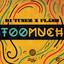 Too Much by DJ Tunez, Flash