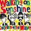 Katrina & The Waves Walking on Sunshine - 2004 Version acapella