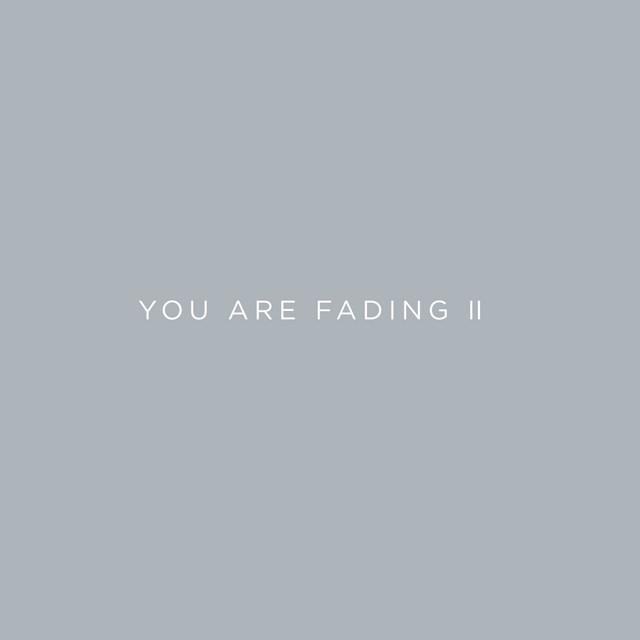 You Are Fading, Vol. 2 (Bonus Tracks 2005 - 2010)