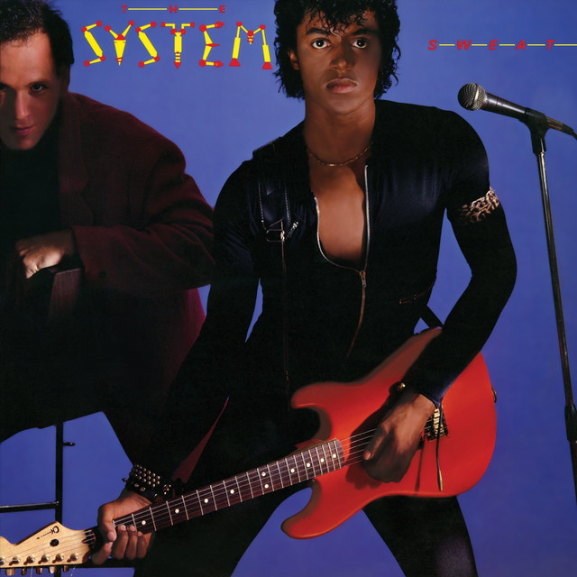 You Are In My System album cover
