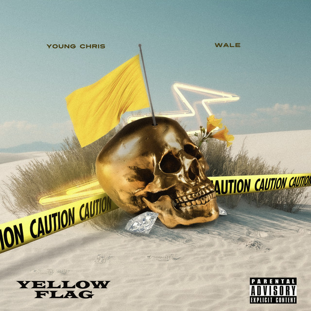 Wale & Young Chris - Yellow Flag cover