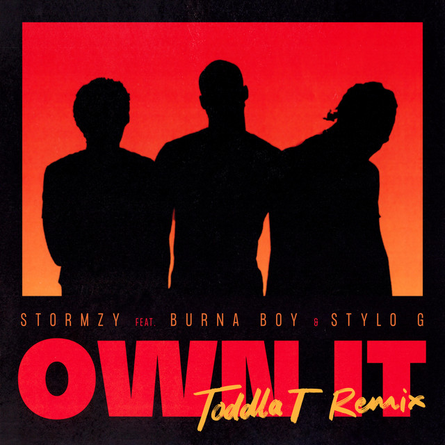 Own It (feat. Burna Boy & Stylo G) [Toddla T Remix]