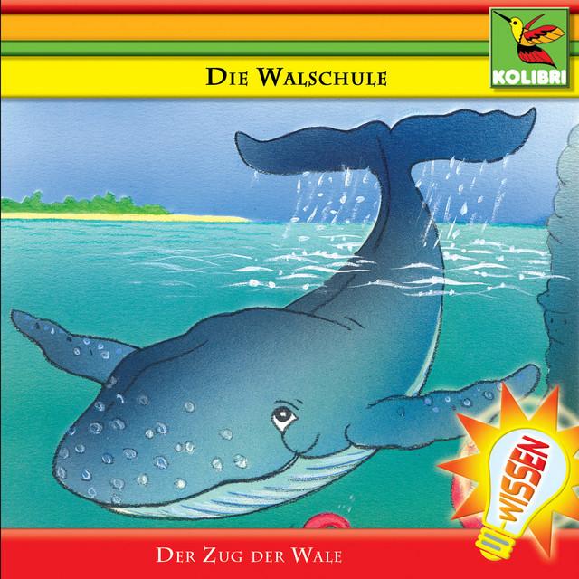 Die Walschule - Der Zug der Wale