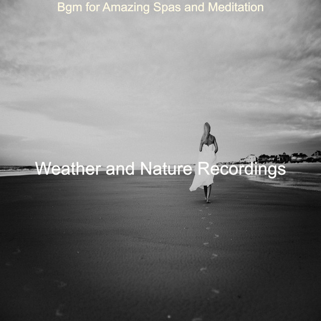 Album cover for Bgm for Amazing Spas and Meditation by Weather and Nature Recordings