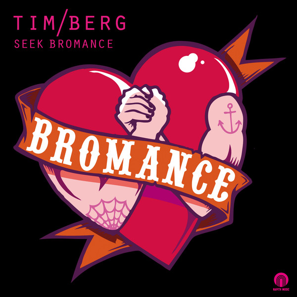 Tim Berg Seek Bromance - Avicii Vocal Edit acapella