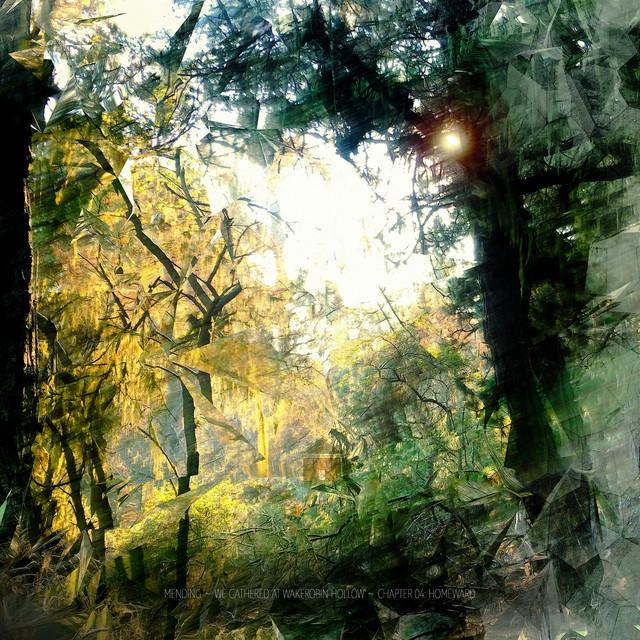 We Gathered at Wakerobin Hollow ~ Chapter 04: Homeward