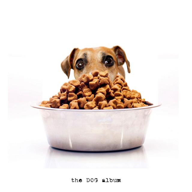 The Dog Album