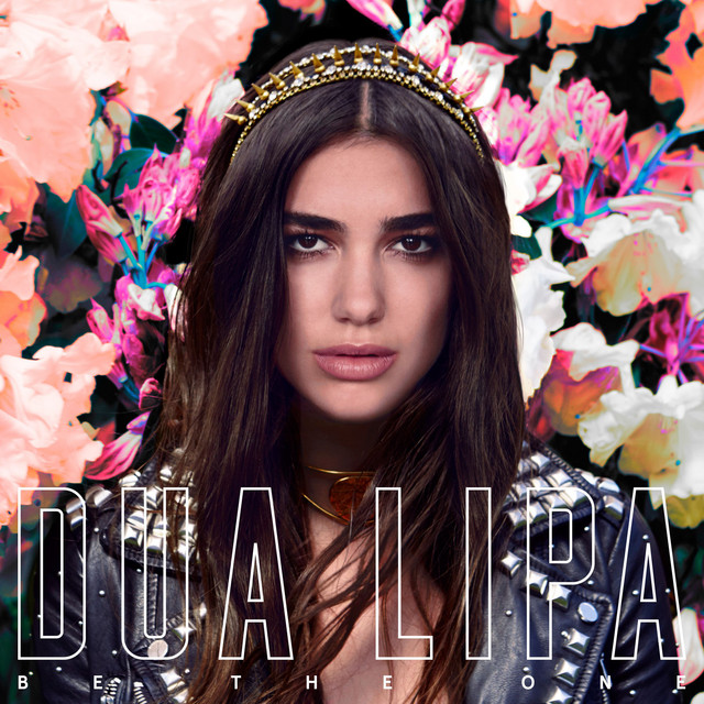 Dua Lipa Be the One acapella
