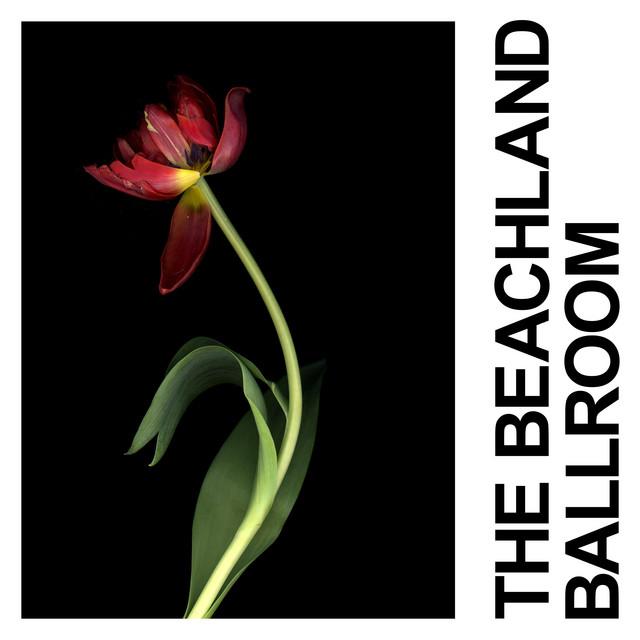 The Beachland Ballroom - Single by IDLES | Spotify