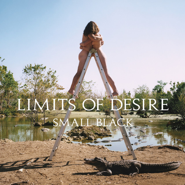 Small Black  Limits Of Desire :Replay