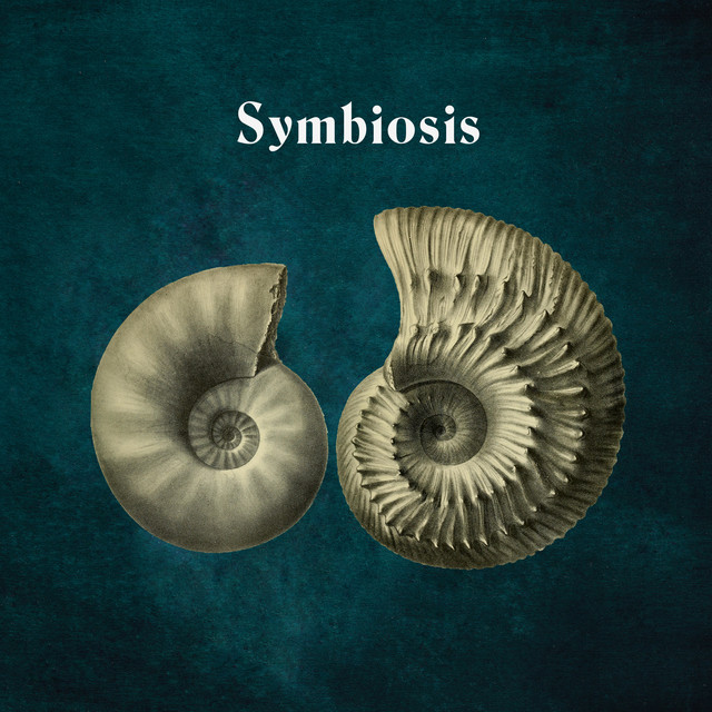 Symbiosis Image