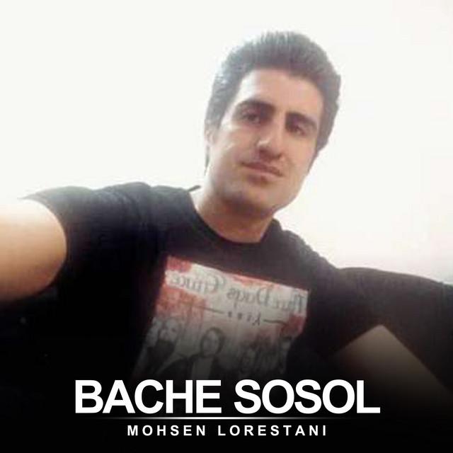 Bache Sosol