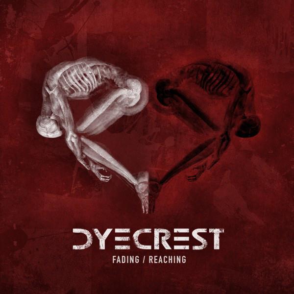 Fading / Reaching (Single Version)