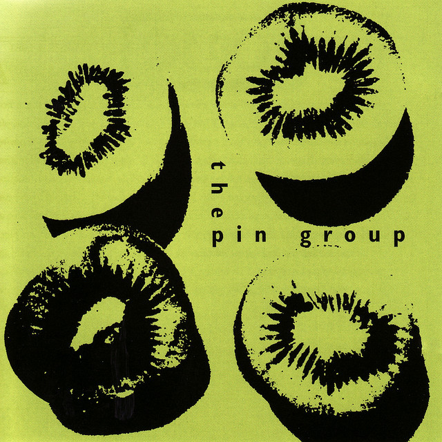 The Pin Group