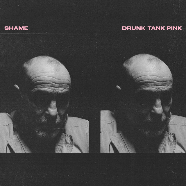 Album cover for Drunk Tank Pink by shame
