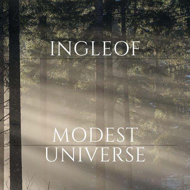 Modest Universe