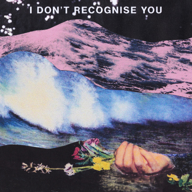 I Don't Recognise You album cover