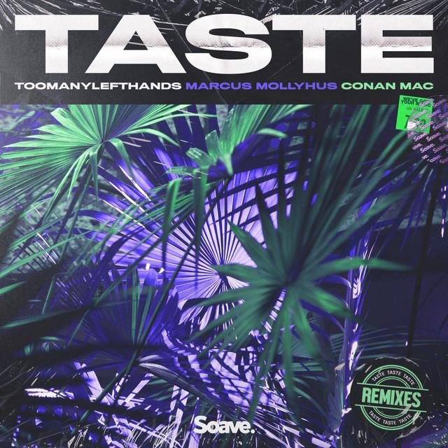 Taste [Remixes] Image