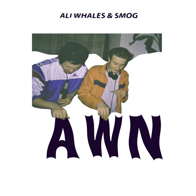 Ali Whales