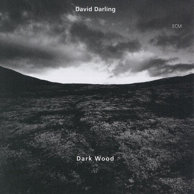 New Morning (Darkwood VII)