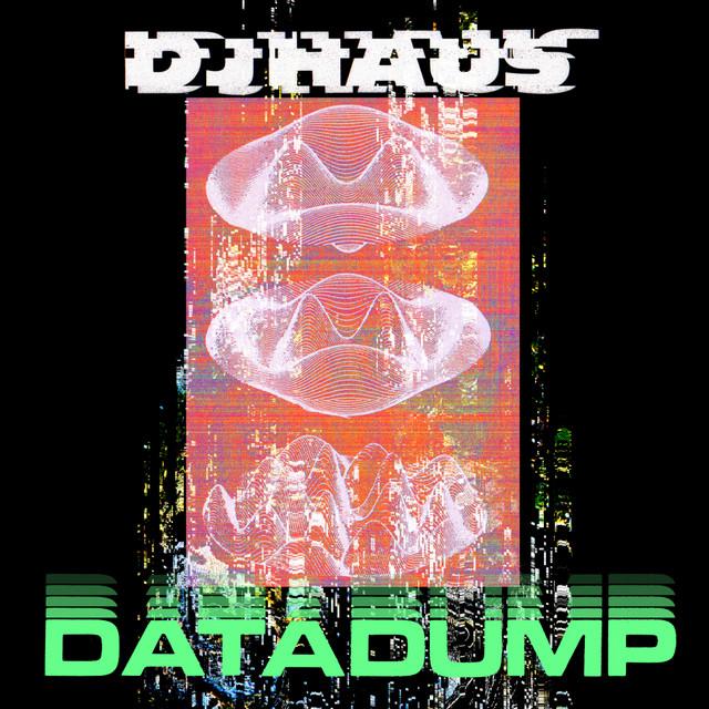Data Dump Image