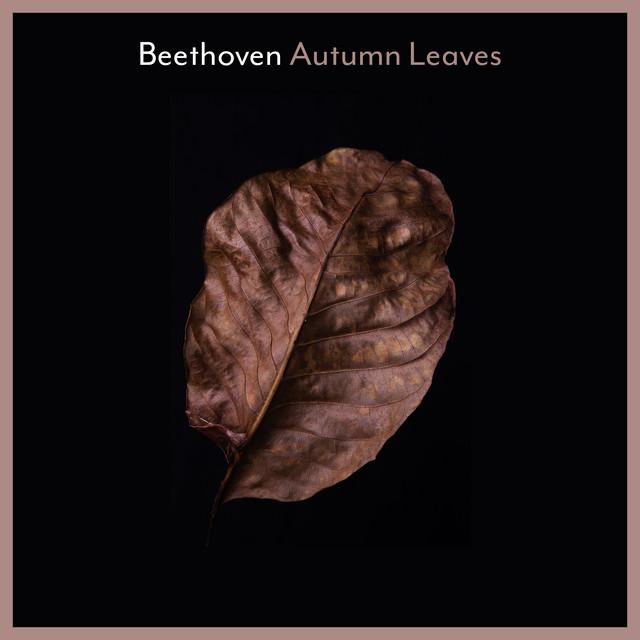 Beethoven: Autumn Leaves