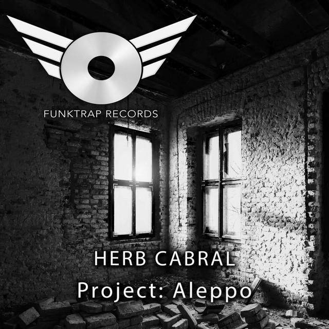 Project Aleppo