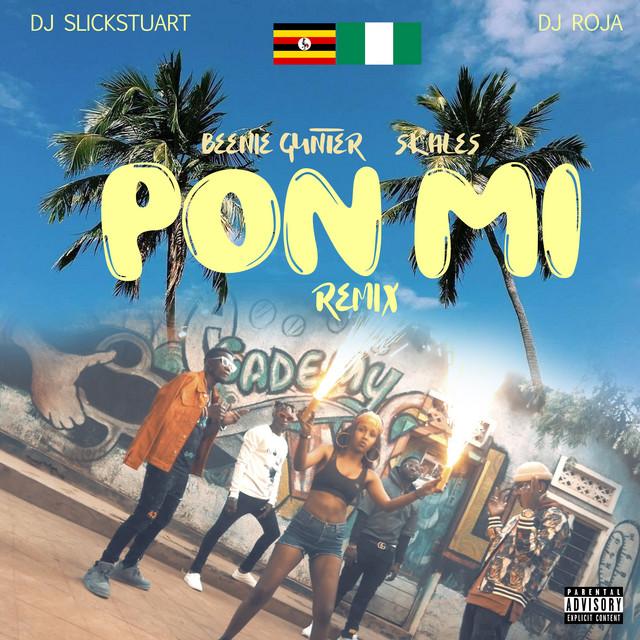 Pon Mi Remix