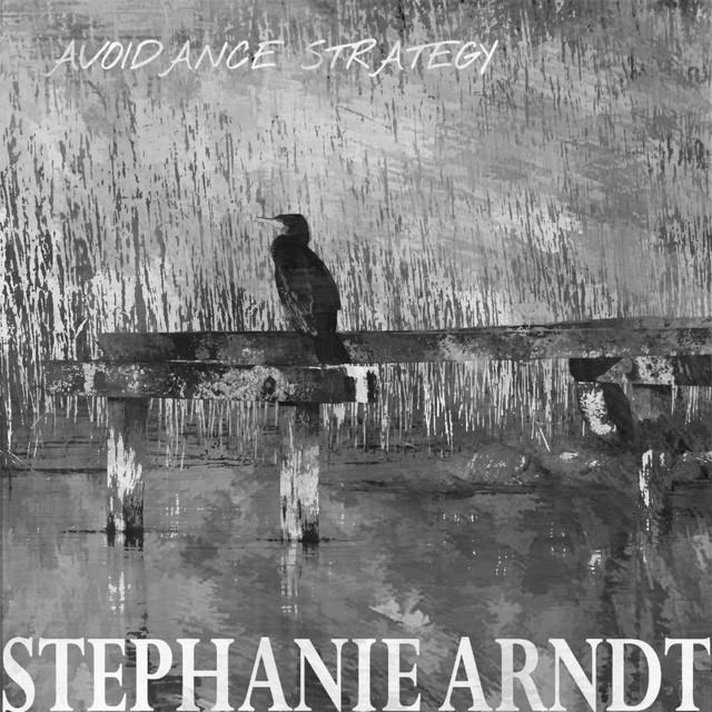Avoidance Strategy - Radio Edit