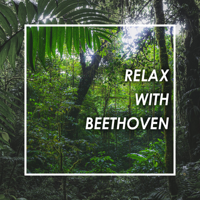 Relax with Beethoven