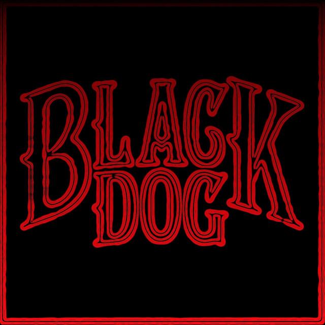 The Black Dog Vinyl