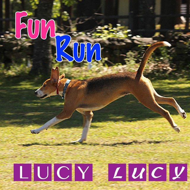 Lucy, Lucy by Fun Run