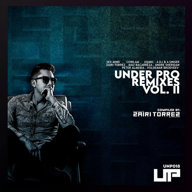 Under Pro Remixes, Vol. 2