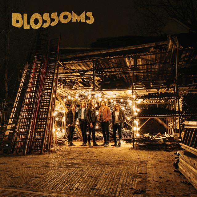 Blossoms  Blossoms :Replay