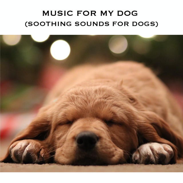 Music For My Dog (Soothing Sounds for Dogs)