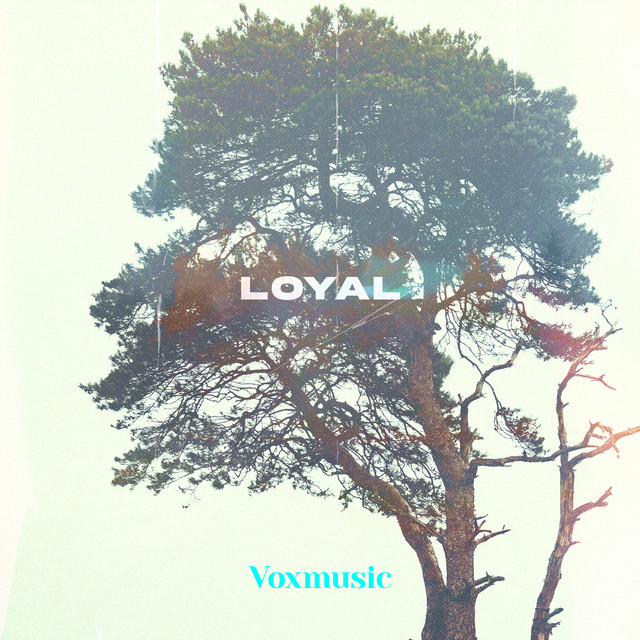 VoxMusic - Loyal