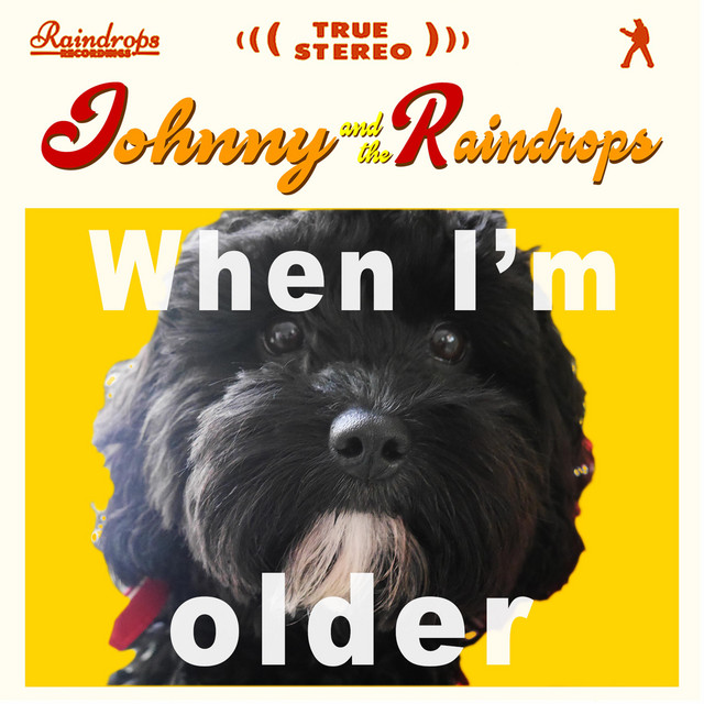 When I'm Older by Johnny And The Raindrops